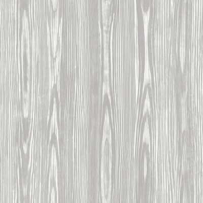 FD23839 Dove Grey Tree Bark Eclipse Street Prints Wallpaper Collections1