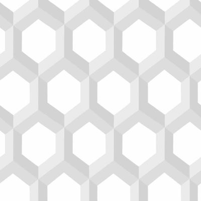 FD23840 Grey Hexagonal Eclipse Street Prints Wallpaper Collections