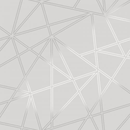 Silver Palladium Geometric Wallpaper 90111