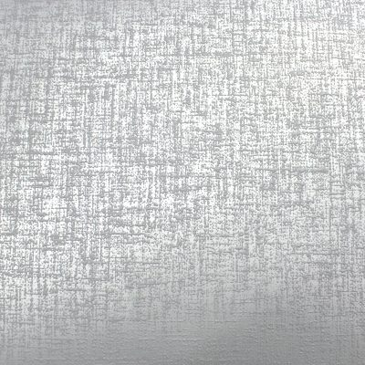Kashmir Texture Silver/Grey Arthouse