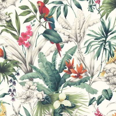 Birds of Paradise Accessorize 275208