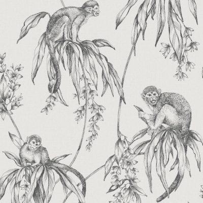 Easy Saïmiri Monkey Anthracite Wallpaper