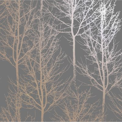 Rhea Zandra Trees Charcoal/Rose Gold 90761 Holden