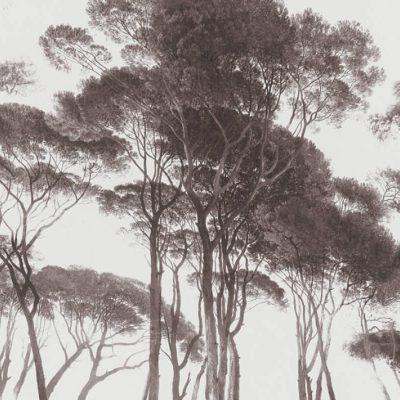 Black White Tree 37651-1 (376511)