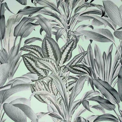 Greenhouse Plants Wallpaper Mint Arthouse 909500