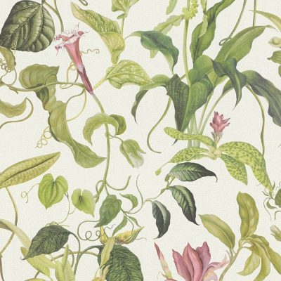 Green Cream Trailing Floral Michalsky Living 37988-1 Wallpaper